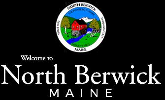 North Berwick seal